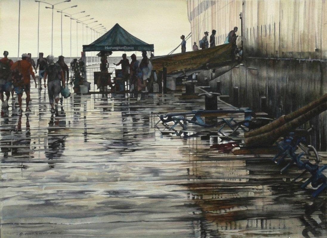 Rouse, Charles - Another Rainy Island