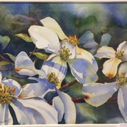 Mini Masters Presentation, Honorable Mention - Sylvia Smith - Dogwood
